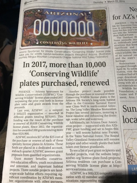 10000-plates-article